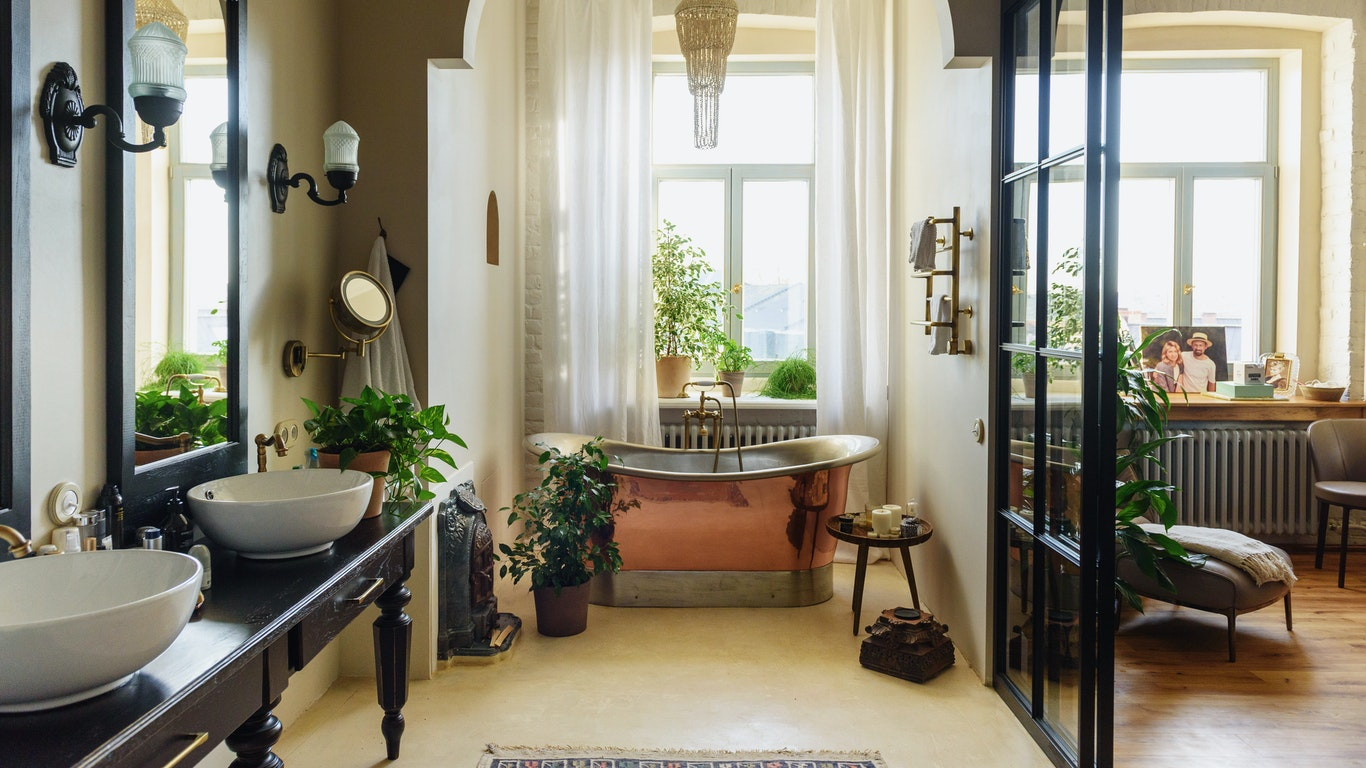 Can You Keep Plants in the Bathroom?